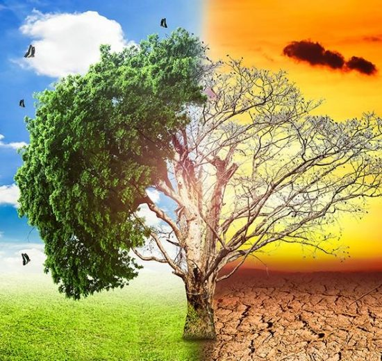 Global warming is causing extreme weather conditions