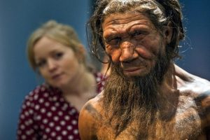 Humans and Neanderthals have much in common