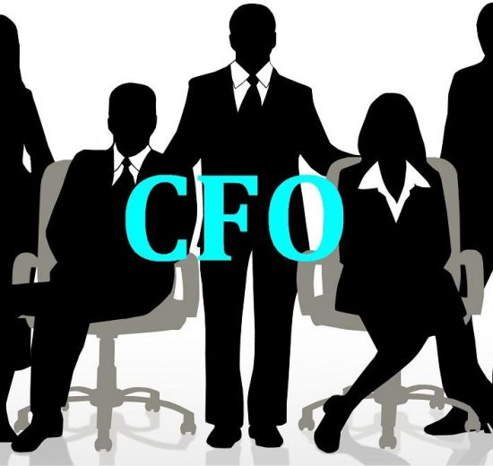 Chief Financial Officers, What do they actually do?