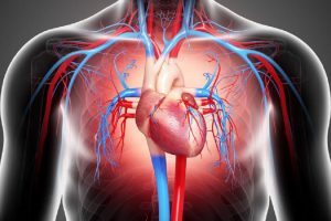 Daily consumption of energy led the young man to heart failure
