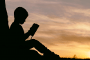 Reading without Understanding: A Disturbing Trend
