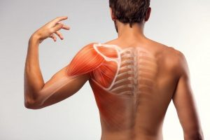 Muscle strain: why does it appear?